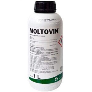 Moltovin